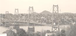 ponte tete.png