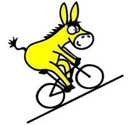 burro-en-bici.jpg
