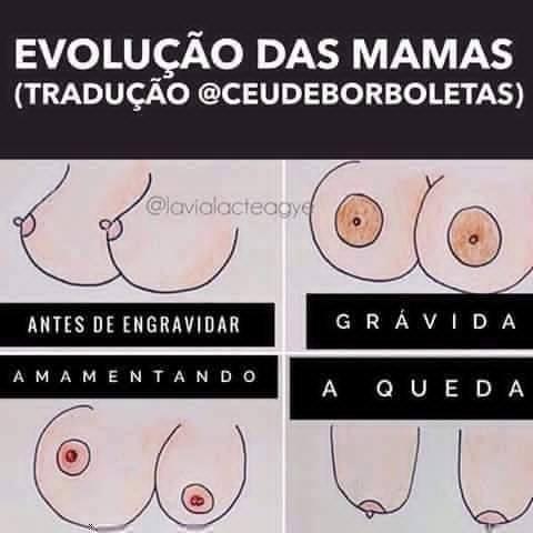 evolução das mamas