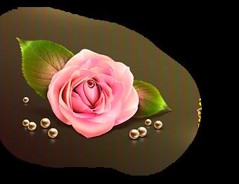 http://c7.quickcachr.fotos.sapo.pt/i/o5107021c/9315564_pzLVa.png
