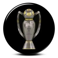 FC Porto Campeão Nacional 10/11 (25)