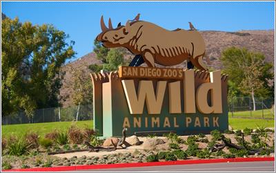 San Diego Wild Animal Park 17344724_ILQWb
