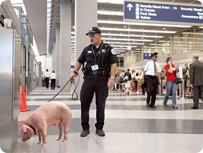 Segurança Aeroportos
