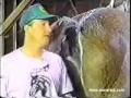 Cavalo solta um peido durante entrevista